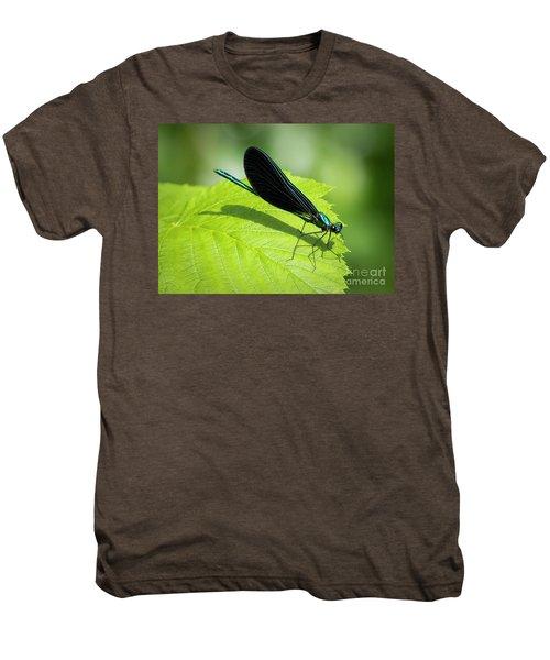 Ebony Jewelwing Men's Premium T-Shirt