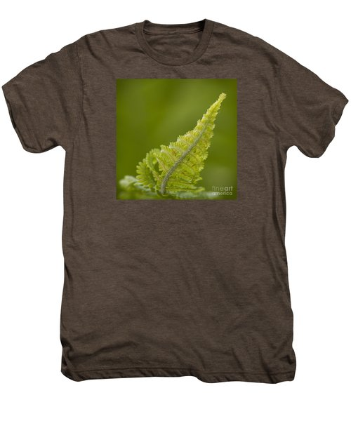 Elegant Fern. Men's Premium T-Shirt
