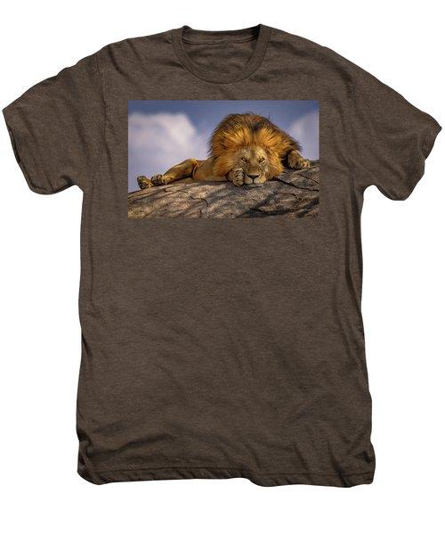 Eye Contact On The Serengeti Men's Premium T-Shirt