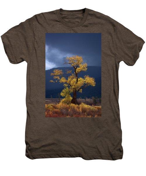 Facing The Storm Men's Premium T-Shirt
