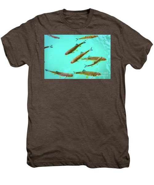 Fish School In Turquoise Lake - Plitvice Lakes National Park, Croatia Men's Premium T-Shirt