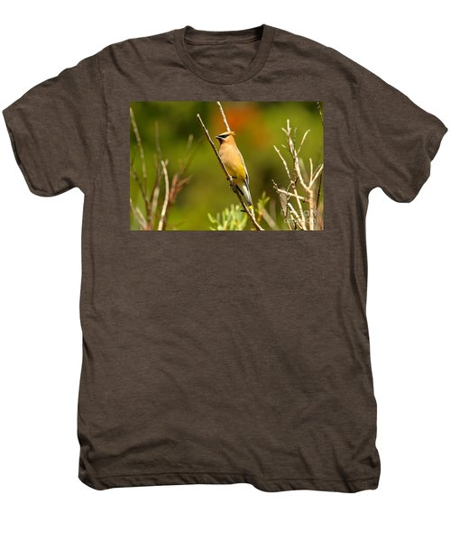 Fishercap Cedar Waxwing Men's Premium T-Shirt by Adam Jewell