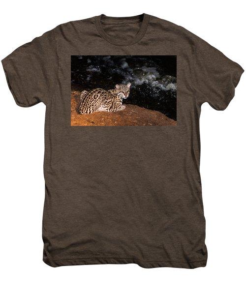 Fishing In The Stream Men's Premium T-Shirt by Alex Lapidus