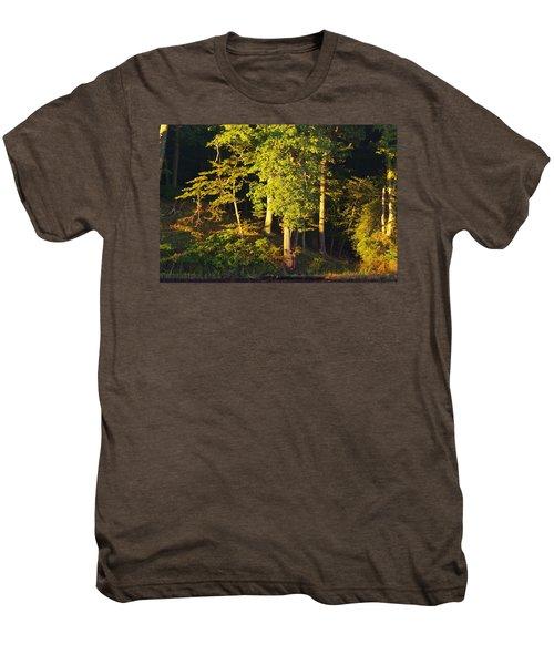 Forests Edge Men's Premium T-Shirt