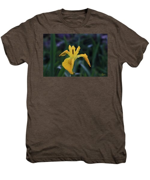 Heart Of Iris Men's Premium T-Shirt