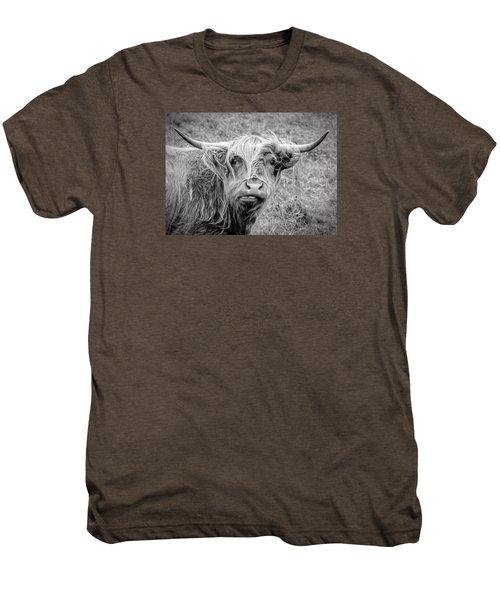 Highland Cow Men's Premium T-Shirt