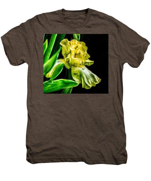 Iris In Bloom Men's Premium T-Shirt
