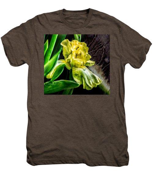 Iris In Bloom Two Men's Premium T-Shirt