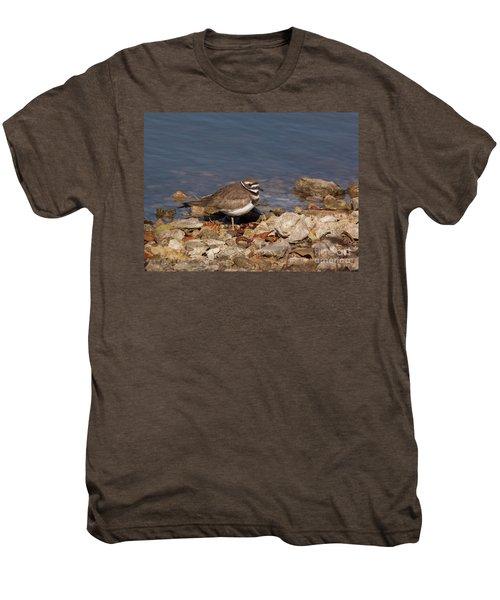 Kildeer On The Rocks Men's Premium T-Shirt