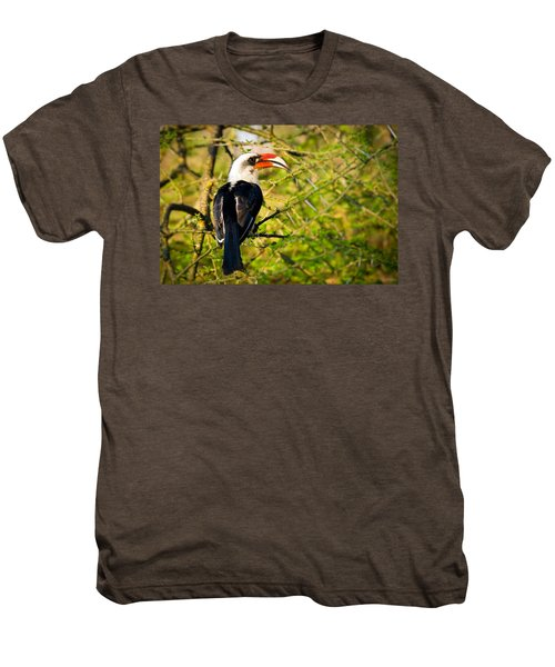 Male Von Der Decken's Hornbill Men's Premium T-Shirt by Adam Romanowicz