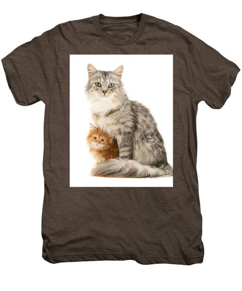 Mother Cat And Ginger Kitten Men's Premium T-Shirt