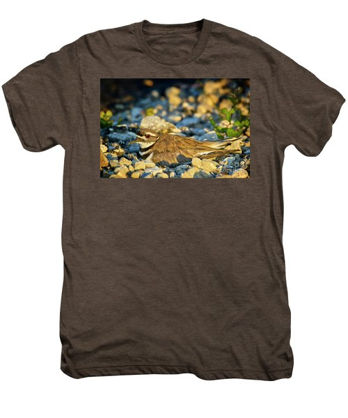 Mother Killdeer 2 Men's Premium T-Shirt