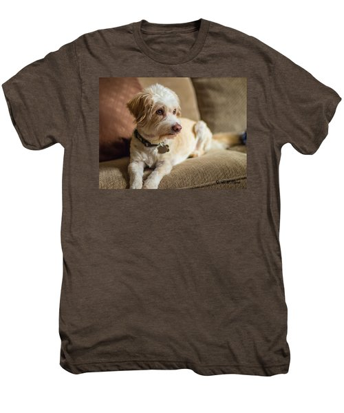 My Best Friend Men's Premium T-Shirt