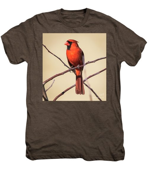 Northern Cardinal Profile Men's Premium T-Shirt by Ricky L Jones
