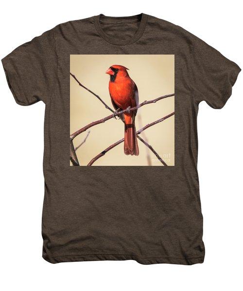 Northern Cardinal Profile Men's Premium T-Shirt