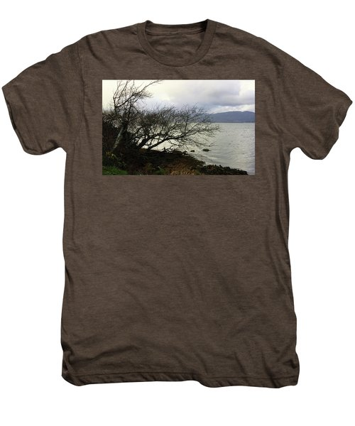 Old Tree By The Bay Men's Premium T-Shirt