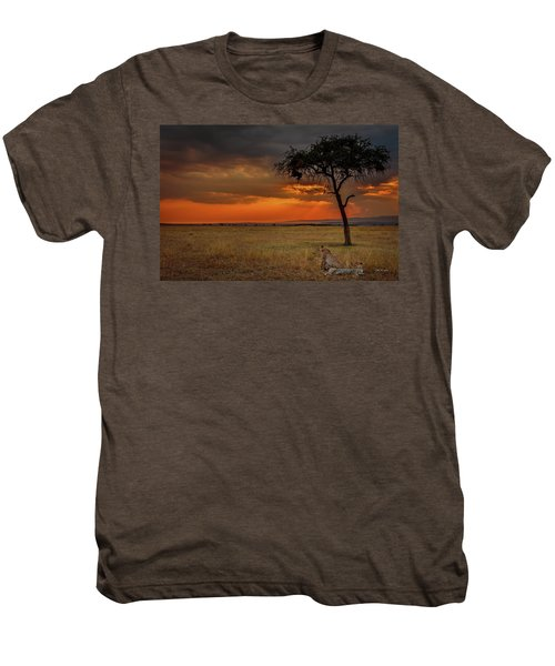On A  Serengeti Evening  Men's Premium T-Shirt