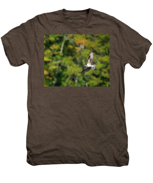 Osprey Men's Premium T-Shirt by Bill Wakeley