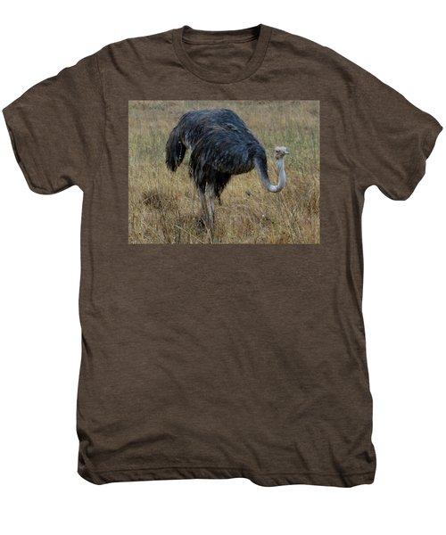 Ostrich In The Grass 1 Men's Premium T-Shirt