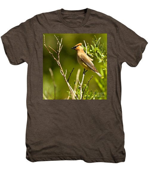 Perfectly Perched Men's Premium T-Shirt by Adam Jewell