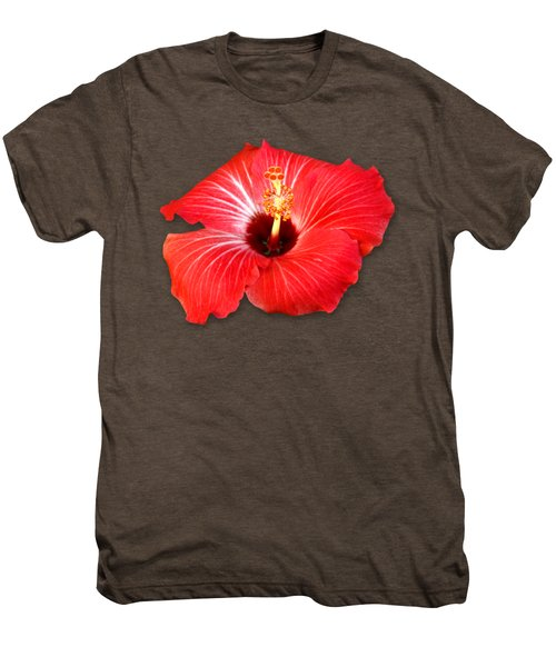 Pistil Power 2 Sehemu Mbili Unyenyekevu Men's Premium T-Shirt