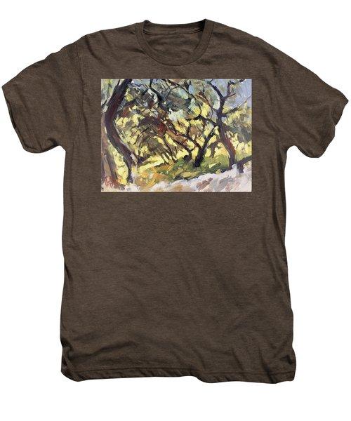 Popping Sunlight Through The Olive Grove Men's Premium T-Shirt