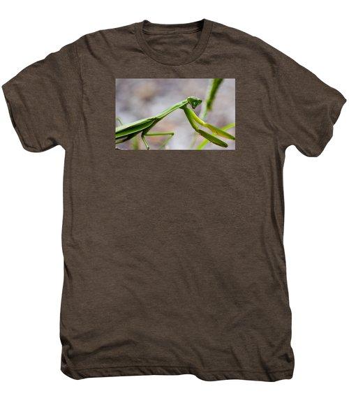 Praying Mantis Looking Men's Premium T-Shirt by Jonny D