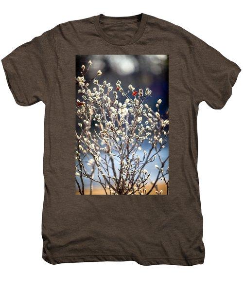 Pussy Willow Men's Premium T-Shirt