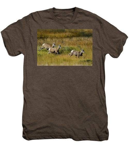 Rocky Mountain Goats 7410 Men's Premium T-Shirt
