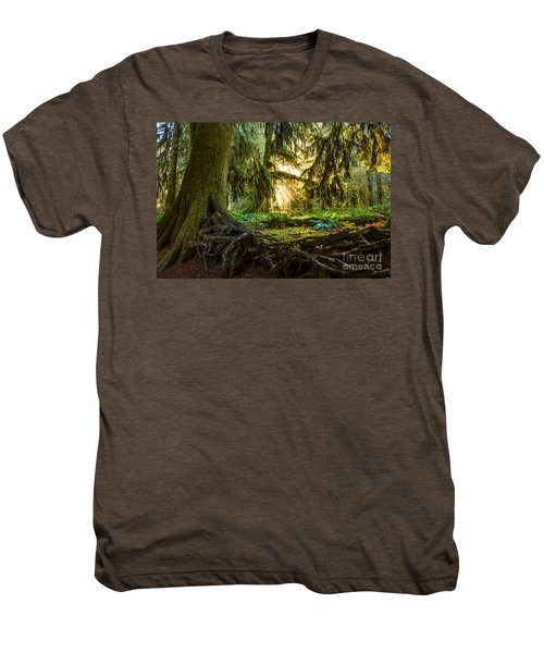 Roots And Light Men's Premium T-Shirt