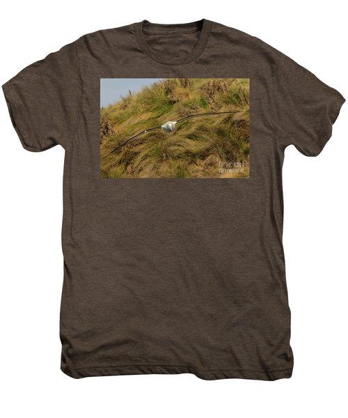 Royal Albatross 2 Men's Premium T-Shirt by Werner Padarin