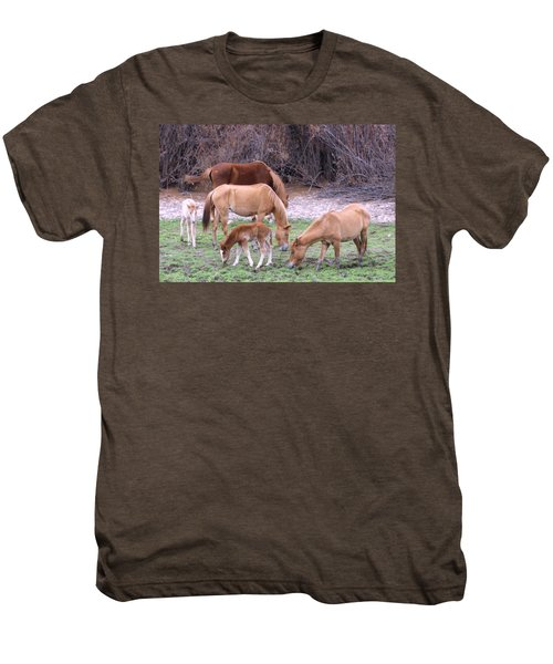 Salt River Wild Horses In Winter Men's Premium T-Shirt
