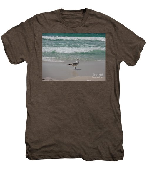 Seagull Men's Premium T-Shirt