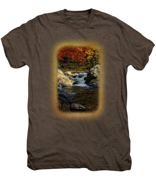 Stream In Autumn No.17 Men's Premium T-Shirt