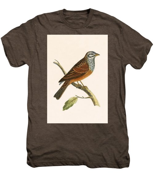 Striolated Bunting Men's Premium T-Shirt