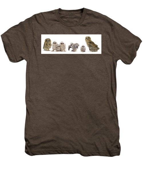 Tawny Owl Family Men's Premium T-Shirt