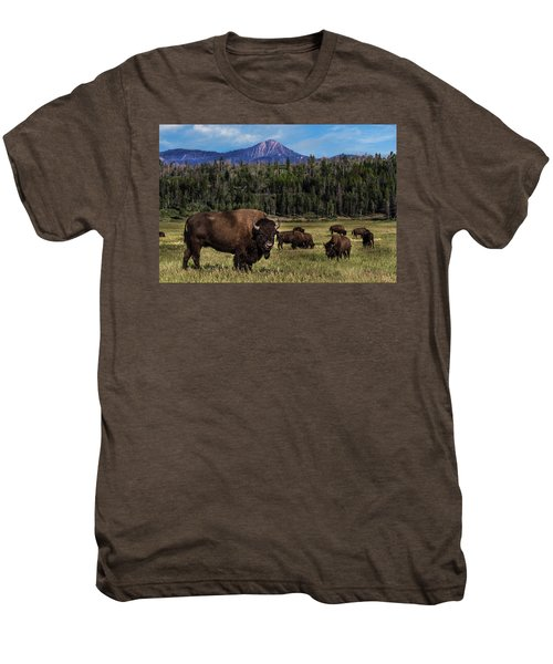 Tending The Herd Men's Premium T-Shirt