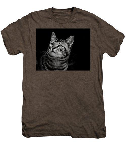 Thoughtful Tabby Men's Premium T-Shirt