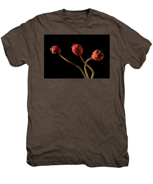 Three Rose Hips Men's Premium T-Shirt