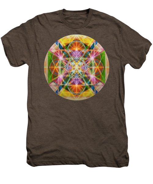Torusphere Synthesis Bright Beginning Soulin I Men's Premium T-Shirt