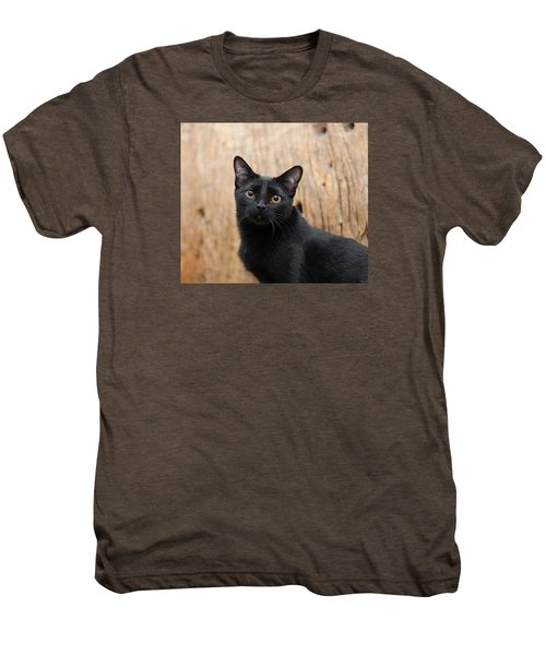 Velvet 2 Men's Premium T-Shirt
