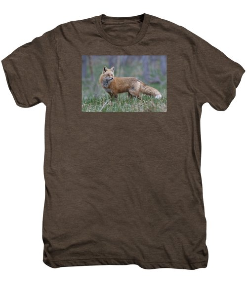 Men's Premium T-Shirt featuring the photograph Watchful by Gary Lengyel