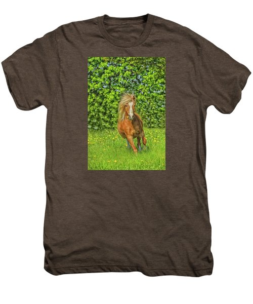 Welsh Pony Men's Premium T-Shirt