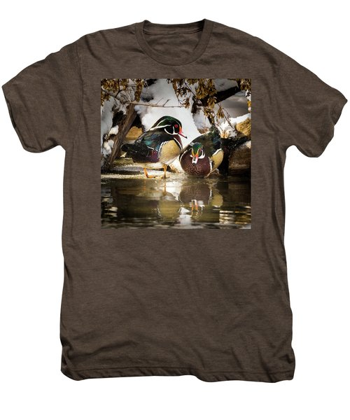 Winter Visitors - Wood Ducks Men's Premium T-Shirt