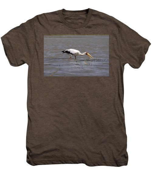 Yellow Billed Stork Wading In The Shallows Men's Premium T-Shirt by Aidan Moran