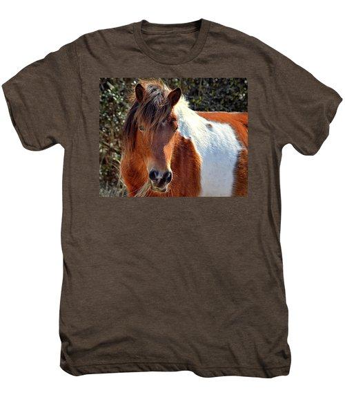 Men's Premium T-Shirt featuring the photograph Assateague Pinto Mare Ms Macky by Bill Swartwout Fine Art Photography