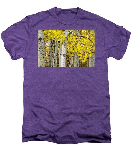 Aspens At Autumn Men's Premium T-Shirt