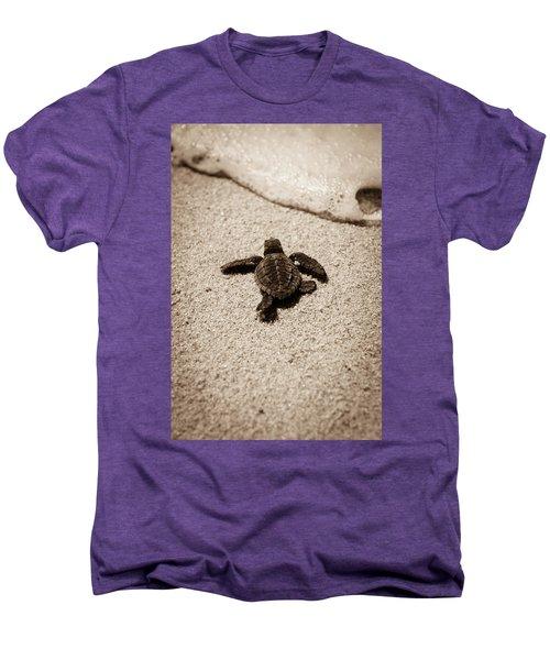 Baby Sea Turtle Men's Premium T-Shirt