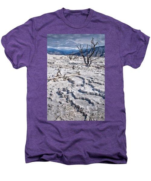 Mammoth Terraces Vertical Men's Premium T-Shirt