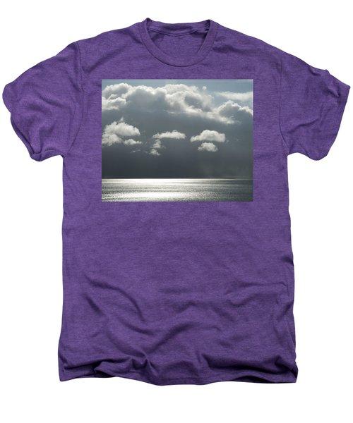 Storm Is Coming  Men's Premium T-Shirt